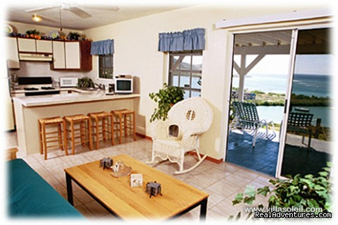 Lower level kitchenette and sitting room. - Villa Soleil St Croix