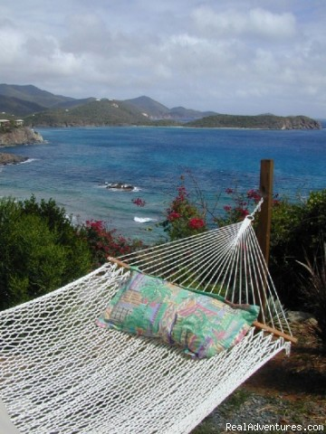 This could be your hammock - Virgin Islands Luxury Vacation Villas