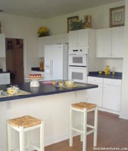 Kitchen - Disney Villa, Kissimmee