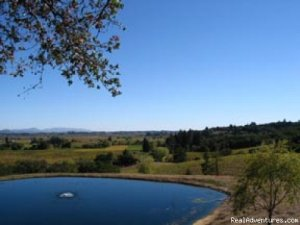 Destination Wedding Articles Healdsburg, California