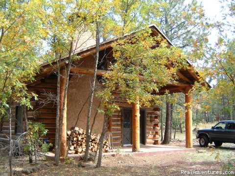 Log cabin in the Pinetop - Arizona