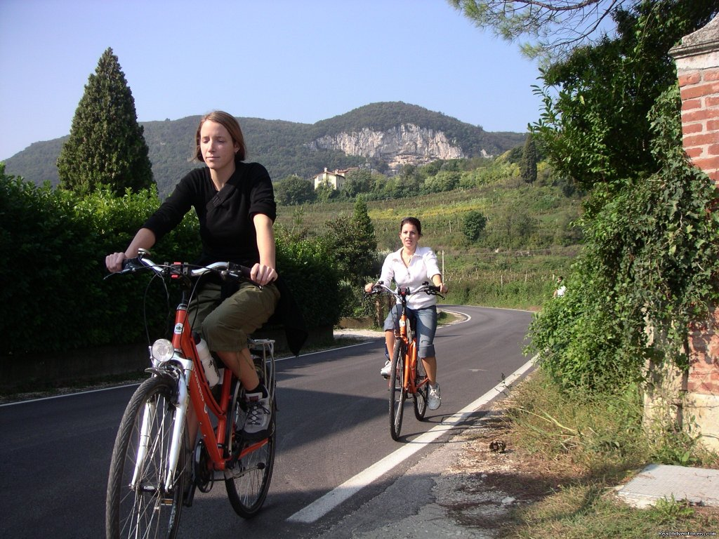 Chianti - the Tuscany between Florence and Siena - Italy | Image #7/10 | EUROCYCLE - Explore Europe by Bicycle