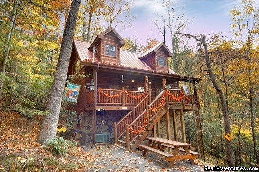 Luxury Cabin and Chalet Rentals in the Heart of the Great Smoky Mountains. With 1 to 11 bedroom Luxury Log Cabins, American Patriot Getaways has the right cabin at the right Price for your next mountain getaway. Take an On-line today!