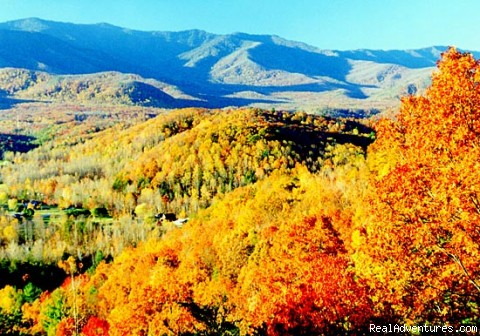 Gatlinburg in the Fall - America's 1 Overnight Rental Company
