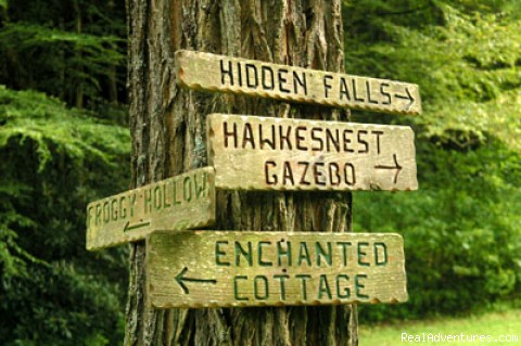 Little Rascals Family Adventure in North Carolina: Tree Signs