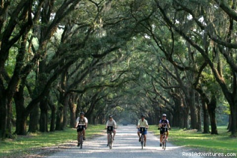 Wormsloe Plantation - Gold & Gems Family Adventure - SC