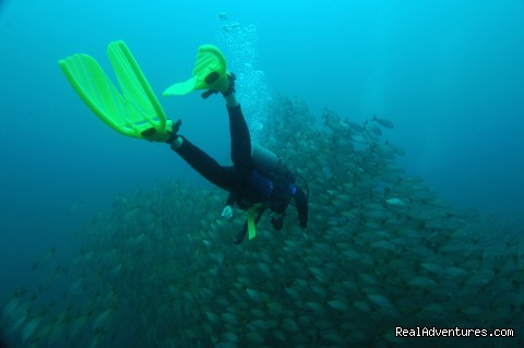 Rich Coast Diving, Costa Rica: Diver at the Bat islands