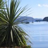 Apartments on the Waterfront -Marlborough Sound