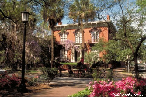 Mercer House, Savannah - Savannah Multisport Excursion