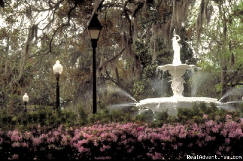 Forsyth Fountain - Savannah Multisport Excursion