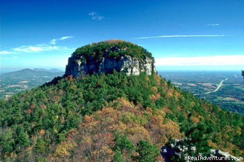 Pilot Mountain - Yadkin Valley Wine Country Excursion