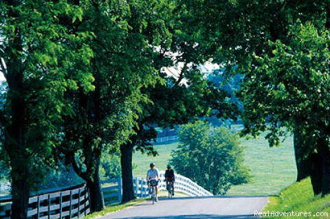 Scenic Bluegrass Country Roads - Bluegrass Excursion