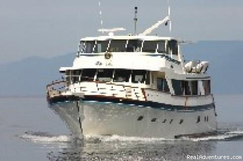 Alaskan Story (#1 of 1) - Alaska Yacht Charters