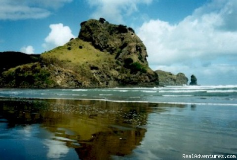 Piha Beach and Bush Cottage