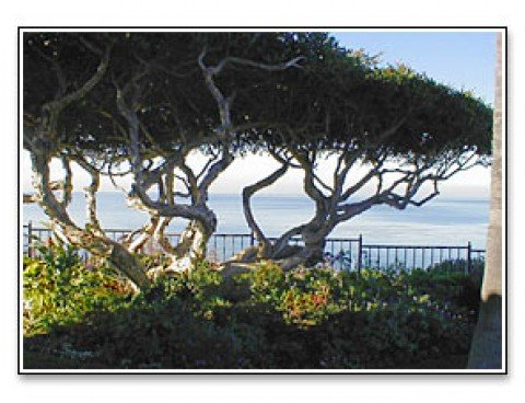 Most romantic city in Southern Clfiornia . . .Dana Point