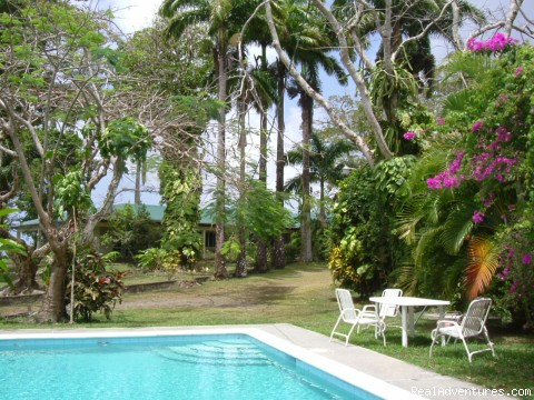 Windy Edge - house, gardens  and pool - Windy Edge, Tobago, retreat on tropical island