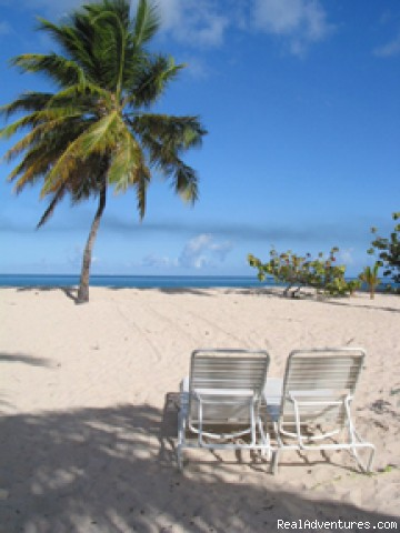Grand Anse Beach at Spice Island Resort - Chase Away The Winter Blues in Grenada