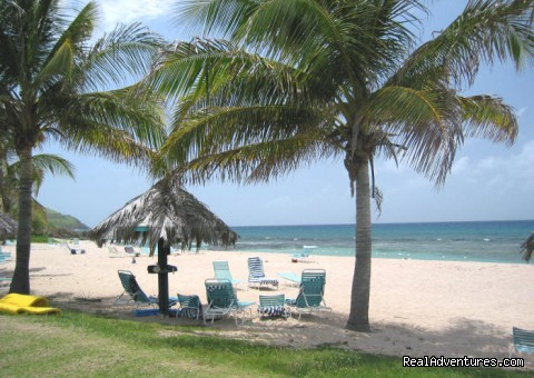 Caribbean Breeze - Gentle Winds Beach (#19 of 19) - Caribbean Breeze & Villa Dawn, St. Croix