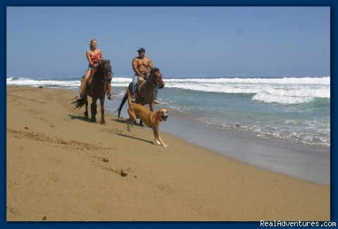 Riding on the Beach - Encuentro Beach Apartments