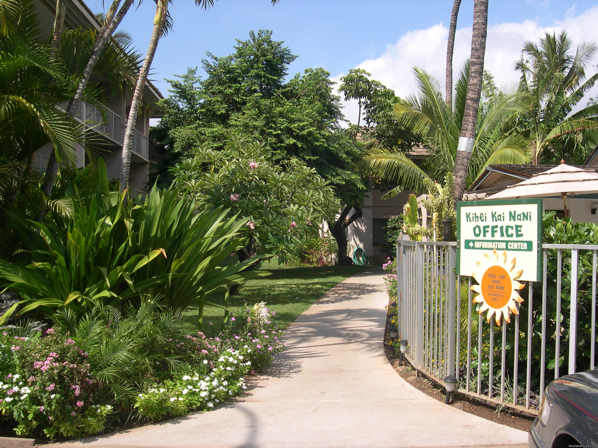 Tropical trees and flowers abound | Image #13/13 | Maui Condo Rental by Beach from $80nt -Kihei Maui