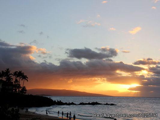 - Maui Condo Rental by Beach from $80nt -Kihei Maui