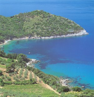 Navarro Hill Resort ARGENTARIO   GR, Italy Bed & Breakfasts