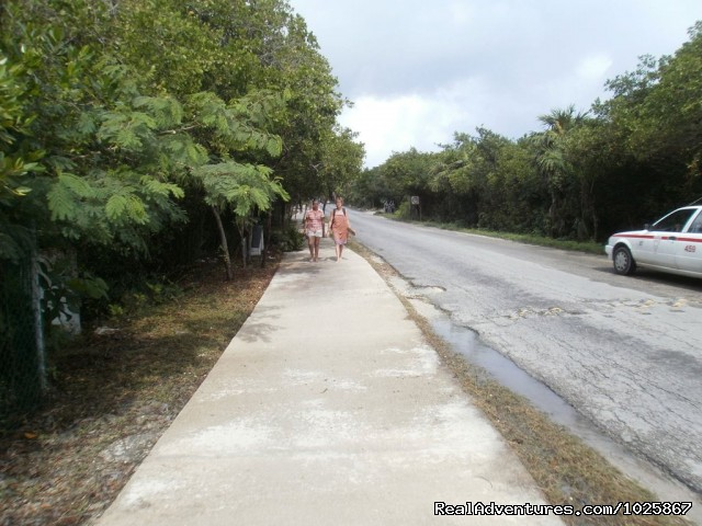 Tulum hike and bike trail (#10 of 12) - Instituto Chac-Mool Spanish School