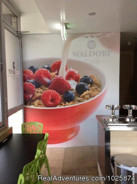 All Our Rates Include Light Breakfast Daily - Sydney South Waldorf Apartment Hotel