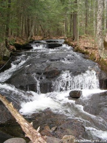 Cascading Falls Brook offers natures background music - Falls Brook Yurt Rentals in the Adirondacks