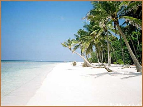 seansunmaldives - Sea and  Sun  Maldives Pvt Ltd