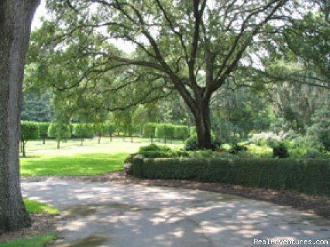 A Change of Pace in Sunny Central Florida Bartow, Florida, Florida  Articles