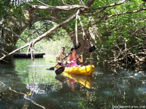 Purveyors of Uncommon Adventures Sight-Seeing Tours Coral Gables , Florida
