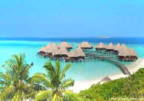 - Maldives Holiday Planner