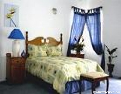 Bird Of Paradise Room - Araliya Boutique Bed & Breakfast Inn