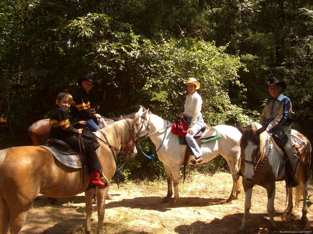 Image #2/2 | Country Equestrian Tours
