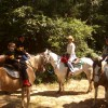 Country Equestrian Tours