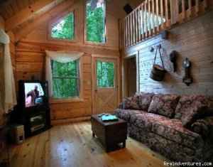 Hidden Falls Cabin-romantic and Secluded Topton, North Carolina Vacation Rentals