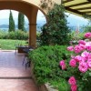 B&B set among olive trees and flowers Perugia, Italy Bed & Breakfasts
