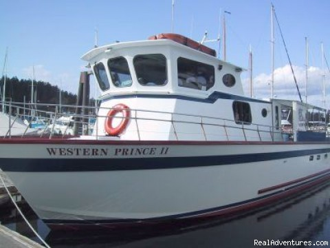 whale watching boat 2 - Eco Tours w/ Western Prince Whale & Wildlife Tours
