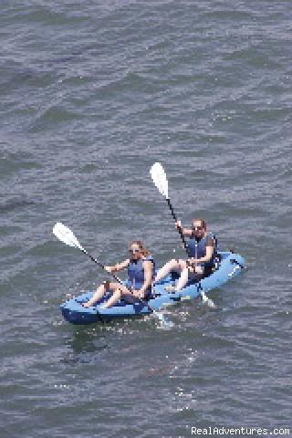 Kayakers in La Jolla (#4 of 4) - Hike Bike Kayak Sports, Inc.