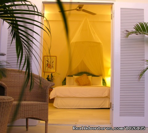 Serene Private Rooms - Surf Goddess - Surf, Yoga & Spa Retreats for Women