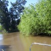 Buenos Aires Tigre Delta islands unforgettable Buenos Aires, Argentina Sight-Seeing Tours