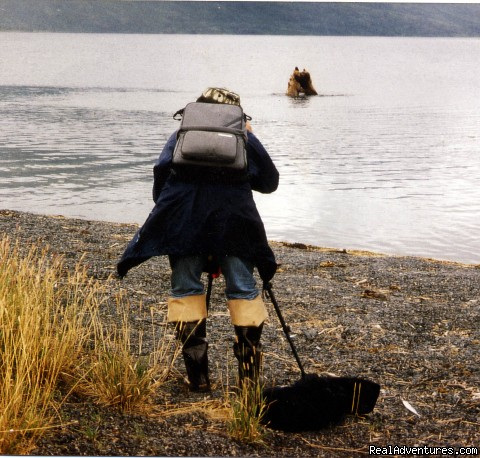 Kodiak Brown Bear Viewing - Incredible Fishing at the Larsen Bay Lodge