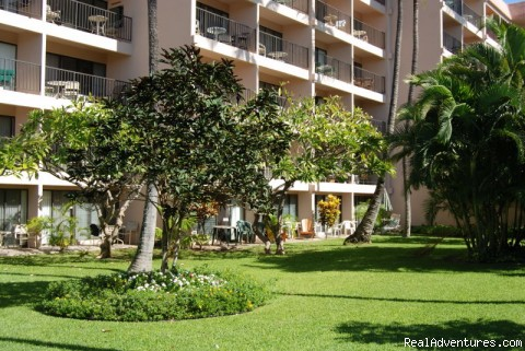 Affordable Luxury in Kihei Hawaii: Garden view