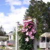 By d'Bay,Next to Terra Nova Nat Park & Golf Course Port Blandford, Newfoundland Vacation Rentals