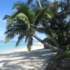 Raus Guesthouse Titikaveka, Cook Islands Youth Hostels