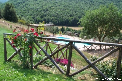 Photo #5 - Charming B&B  Podere Costa Romana
