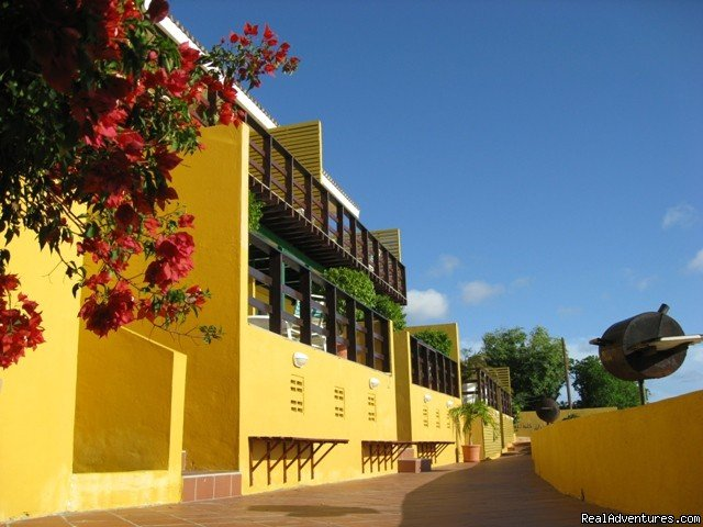 All West Diving & Apartments West Point, Curacao Vacation Rentals