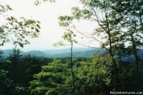Photo #2 - Tranquility in the North Georgia Mountains