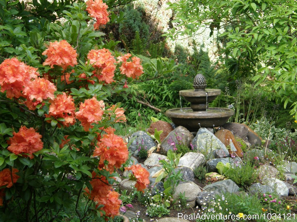 Fountains and azaleas | Image #24/26 | Cedar Wood Lodge Bed & Breakfast Inn